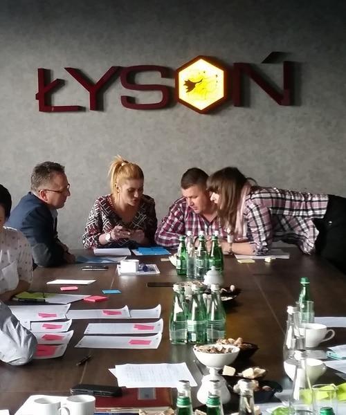 LYSON Klient ProOptima wdrożenie dosprzedaży
